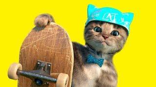 Мой маленький КОТЕНОК идет в ШКОЛУ | НОВЫЙ мультик про кошек  Симулятор милого котика для детей