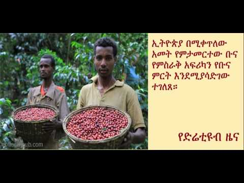 DireTube News - Ethiopia to help East Africa to record coffee harvest
