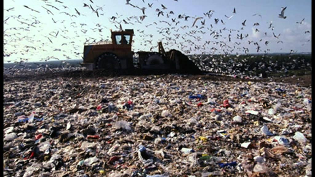 Свалка мусора в г Сочи п Лоо Youtube