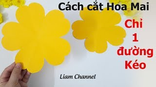 How to make 5 petal hand cut paper flowers - DIY | Liam Channel