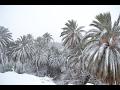 changement climatique : la neige au Sahara ❄🐪🌨🐪