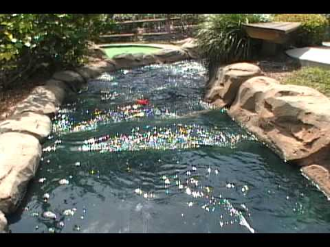 timeless design 983f9 d1209 Smugglers Cove   Adventure Mini Golf Courses with Live Alligators!