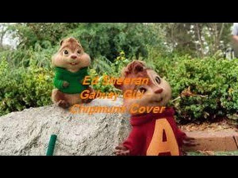 ed-sheeran-galway-girl---chipmunk-cover