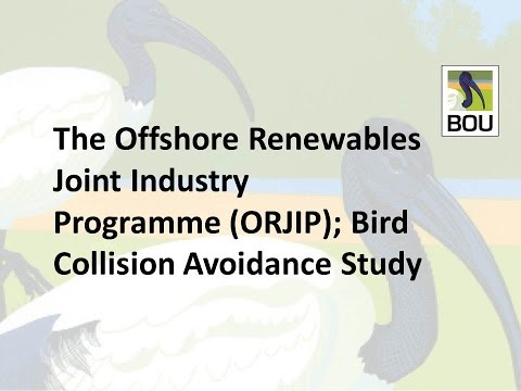 #BOU2015 - Robin M. Ward; The Offshore Renewables Joint Industry Programme; Bird collision