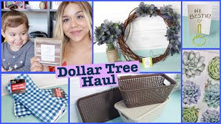 Dollar Tree HAUL July 2018 NEW Storage Bins!