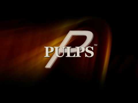 PULPS 2 minute Overview / Why use it / Commercial Loan Pricing Model