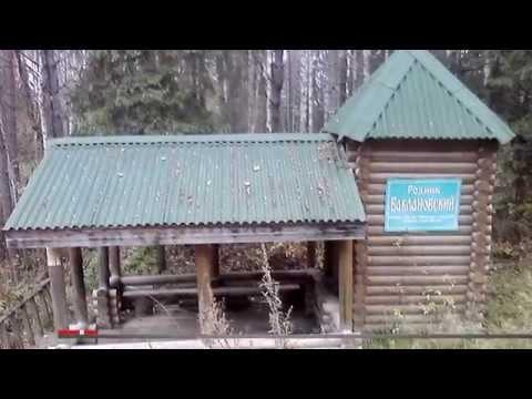 Строим деревянный дом в Ярославле