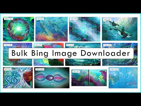 Bulk Bing Image Downloader