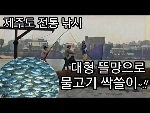 대형 뜰채로 물고기 싹쓸이 ~!! 제주도 전통 �
