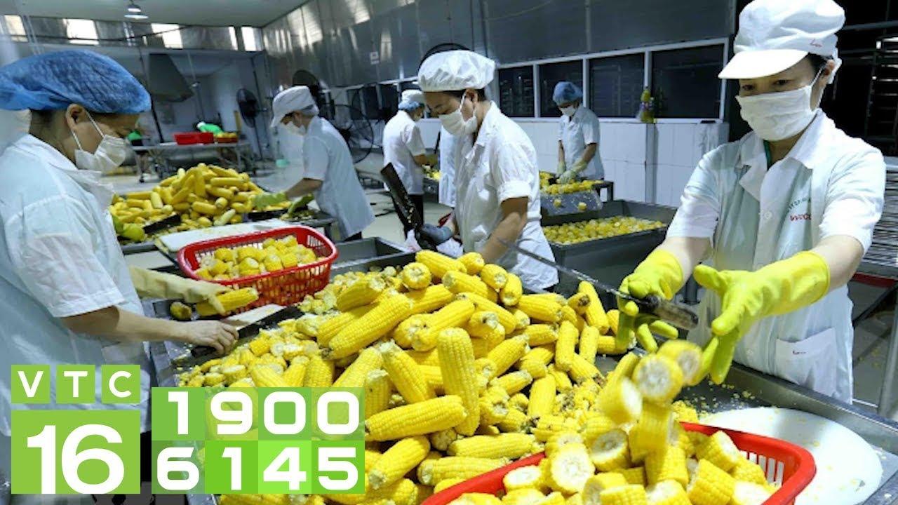 Nông sản Việt không dễ vào thị trường EU   VTC16