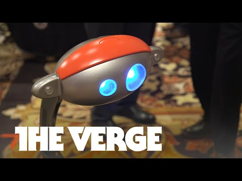 Budgee the luggage-carrying robot just won