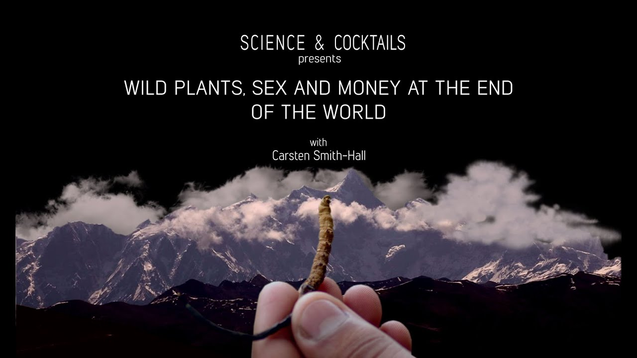 End of world sex
