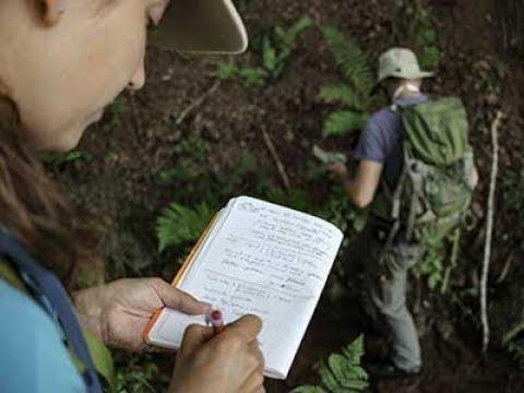 Webinar #2: Essential Skills For A Modern Economic Geologist