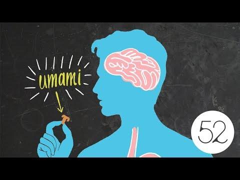 wine article Umami The 5th Taste Explained  Food52
