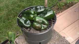 Grow Bag Poblano's and Chili's - Just Add Water