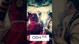 Dhadak Koi Bandhini | Ishaan, Janhvi | Whatsapp Status Video