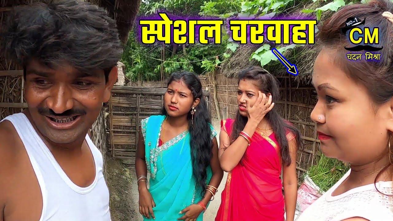 Ramlal Ke comedy | रामलाल के स्पेशल भैंस चरवाहा | #MaithiliComedy | Ramlal Maithili Comedy