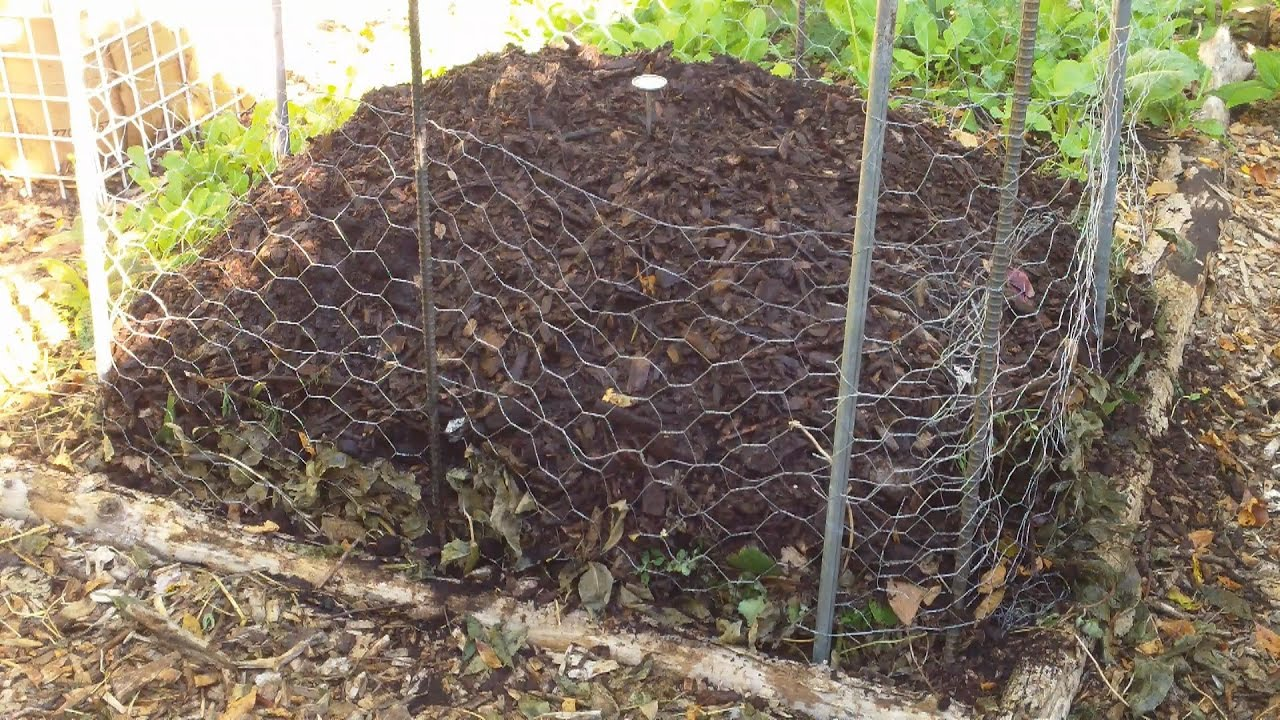 our fall winter compost pile ensuring a steady supply of free