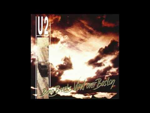 Baixar U2 Audio Bootlegs - Download U2 Audio Bootlegs   DL