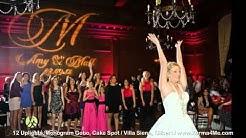 Uplighting, Monogram Gobo, Cake Spot - Wedding Reception -Villa Siena, Gilbert AZ