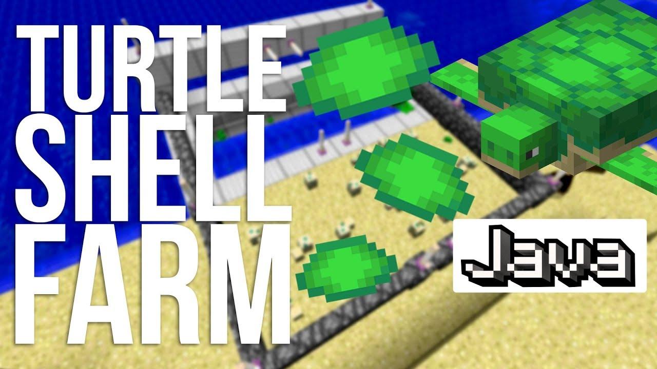 Getting Turtle Scutes Survival Mode Minecraft Java Edition