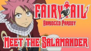 Fairy Tail Abridged Parody - Meet the Salamander