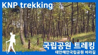 국립공원 트레킹 - 태…