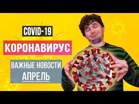 Коронавирус / Новости / МНЕНИЕ / Комментарии | Доктор Побединский