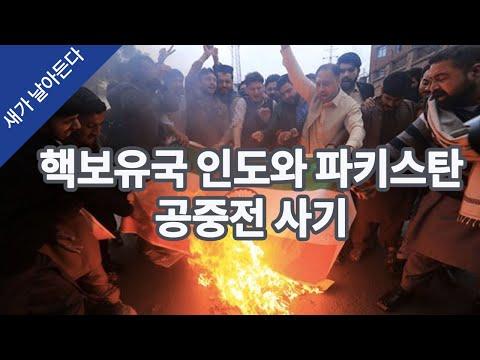 핵보유국 인도와 파키스탄의 공중전 사기 (찌라시의 중국 이야기)  #새날 #새가날아든다