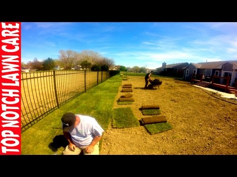 How to Install Sod Timelapse, Lawn Care Vlog #111