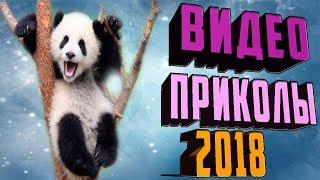 Самые лучшие приколы 2018. Видео приколы онлайн. Ржака. Розыгрыши