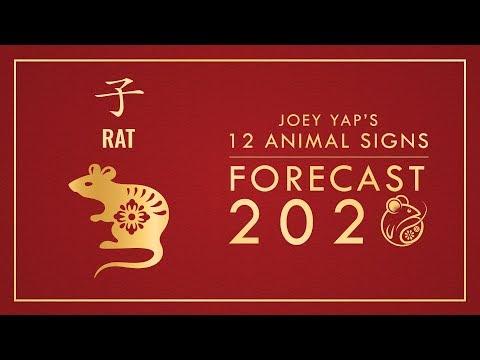 2020 Animal Signs Forecast: RAT [Joey Yap]