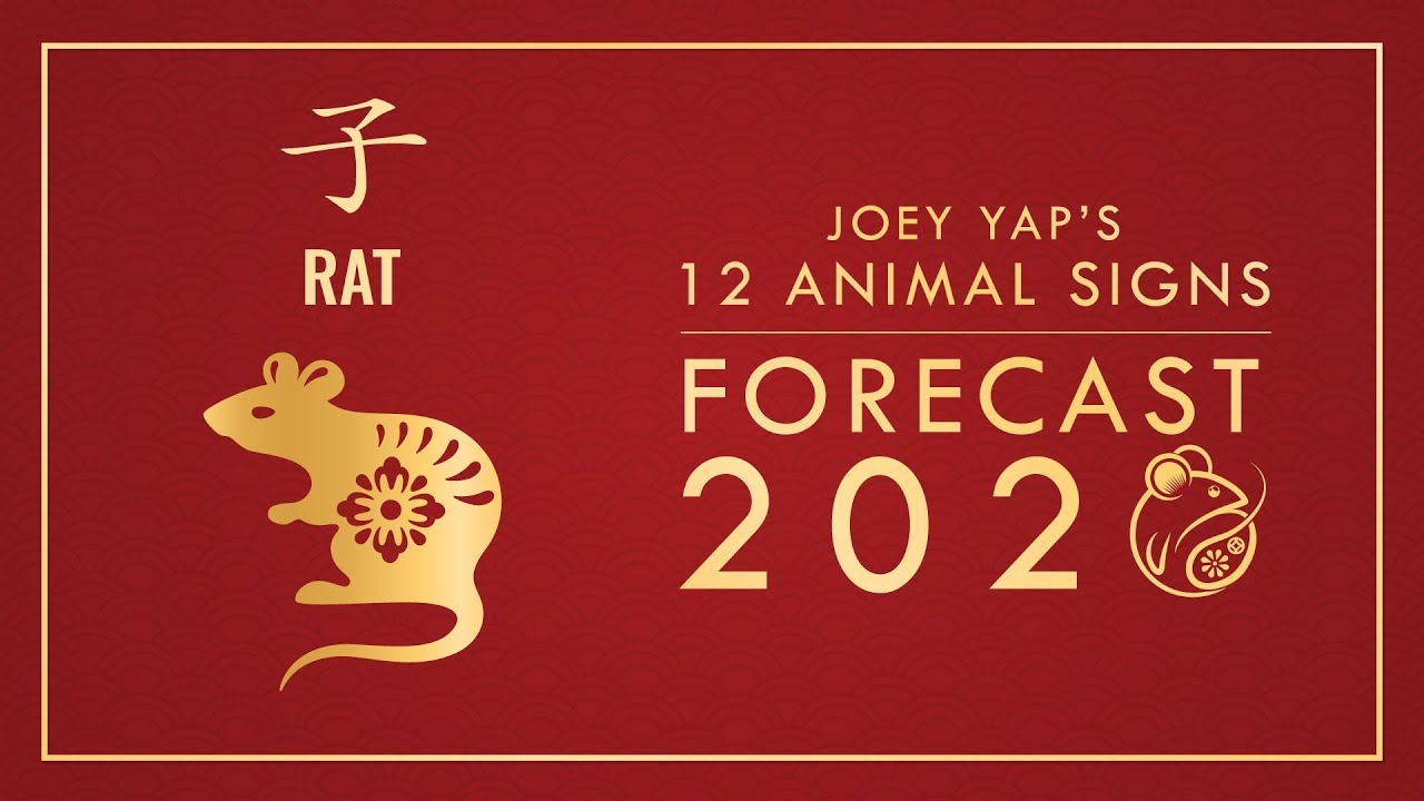 Chinese New Year 2020 Animal: Year of the Rat Zodiac Sign ...