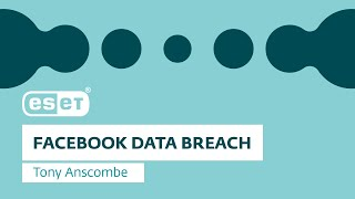 What does the Facebook data breach mean for users?