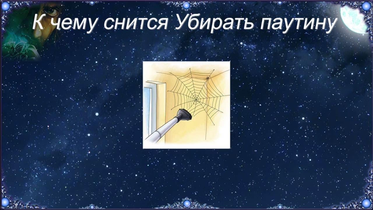 К чему снится Убирать паутину (Сонник)