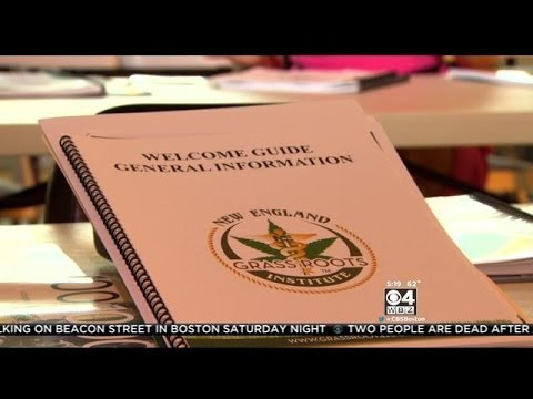 Quincy Business Offers Training For Medical Marijuana Use In Mass.