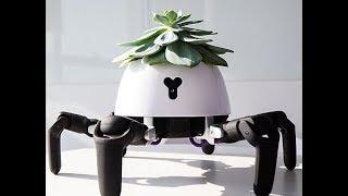 「さ、光合成しにいくよ!」頭に乗せた植物を日光浴させたり、水やりのタイミングを動きで知らせる植物育成ロボット