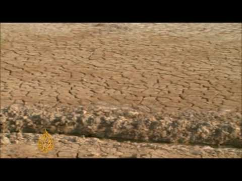 Syrian farmers battle drought - 09 Dec 09