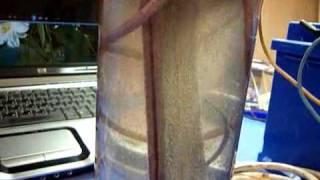 газ Брауна или электролизёр своими руками