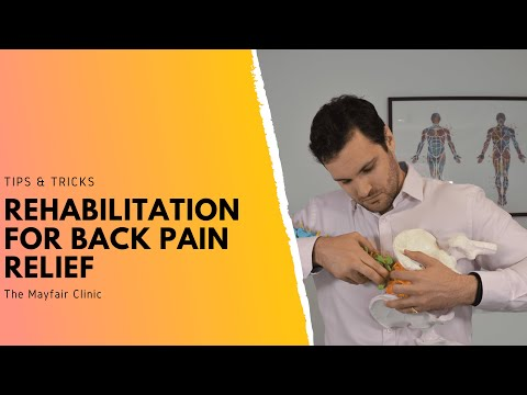 rehabilitation-for-back-pain-relief-|-the-best-lower-back-pain-exercises