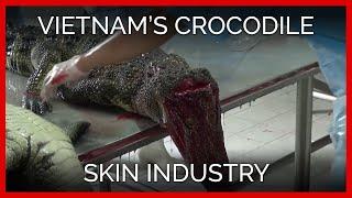 Vietnam's Crocodile Skin Industry