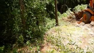 Building A Farm Pond (part 1)