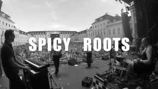 Spicy Roots Live - KSK music open `15