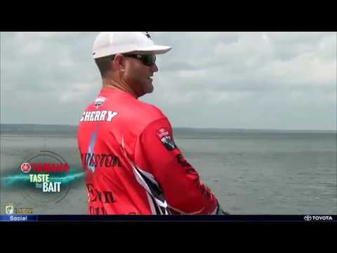 Taste the Bait: Jerkbait on Sam Rayburn