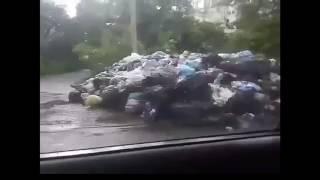 Порошенко лучше запрети свалки во Львове а не Одноклассники!!!