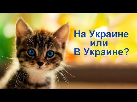 Грузинский Тост !!! ( На Украине или В Украине )