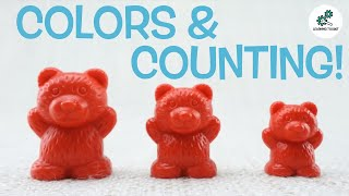 Learn SIZES, COLOURS & COUNTING WITH BEARS! | For Toddlers | From Learning Toolkit