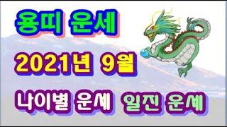 9월 용띠 운세 - 2021년 9월 신축년 정유월 용띠 일진 사주 운세보기