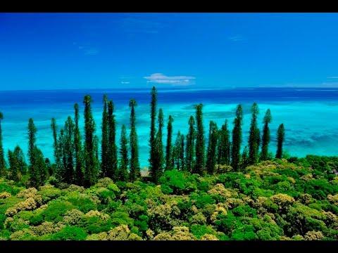 My New Caledonia October 2016 Deals