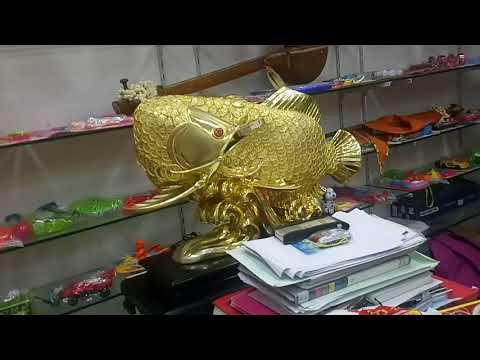 golad fish